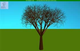 Tree screensaver 2.1 screenshot