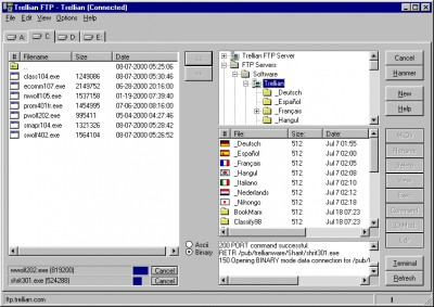 Trellian FTP 3 screenshot