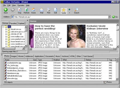 Trellian SiteSpider 1.00.004 screenshot