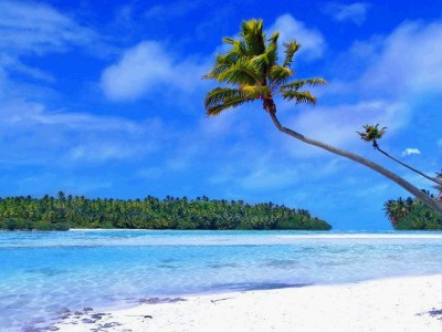Tropical Beach Living Desktop 1.0.0 screenshot