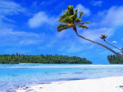Tropical Beach Living Desktop 1.0.0 screenshot