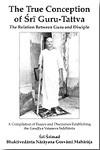 True Conception of Sri Guru Tattva (pdf) 1.08 screenshot