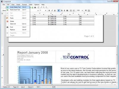 TX Text Control .NET Professional 13.0 screenshot