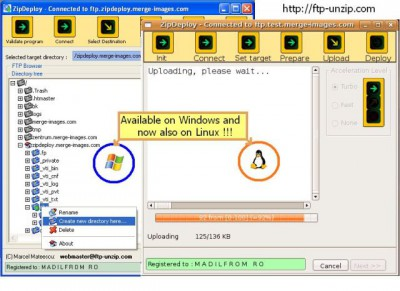 Unzip FTP ZipDeploy 2.1.1 screenshot