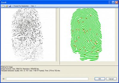 VeriFinger Standard SDK (Windows Demo) 4.2 screenshot