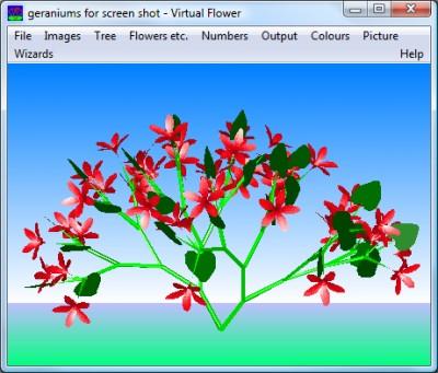 Virtual Flower 2.1 screenshot