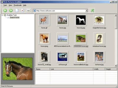 Web Pictures Grabber 2.00 screenshot