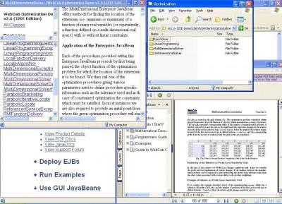 WebCab Optimization (J2EE Edition) 2.6 screenshot