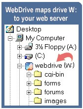 WebDrive 11.0 screenshot
