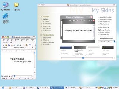 WindowBlinds 10.81 screenshot
