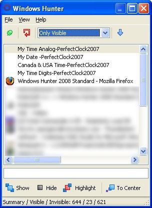 Windows Hunter 2008 Standard 1.0.0.8 screenshot