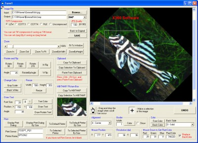 X360 Image Viewer ActiveX OCX (Team Developer) 4.67 screenshot