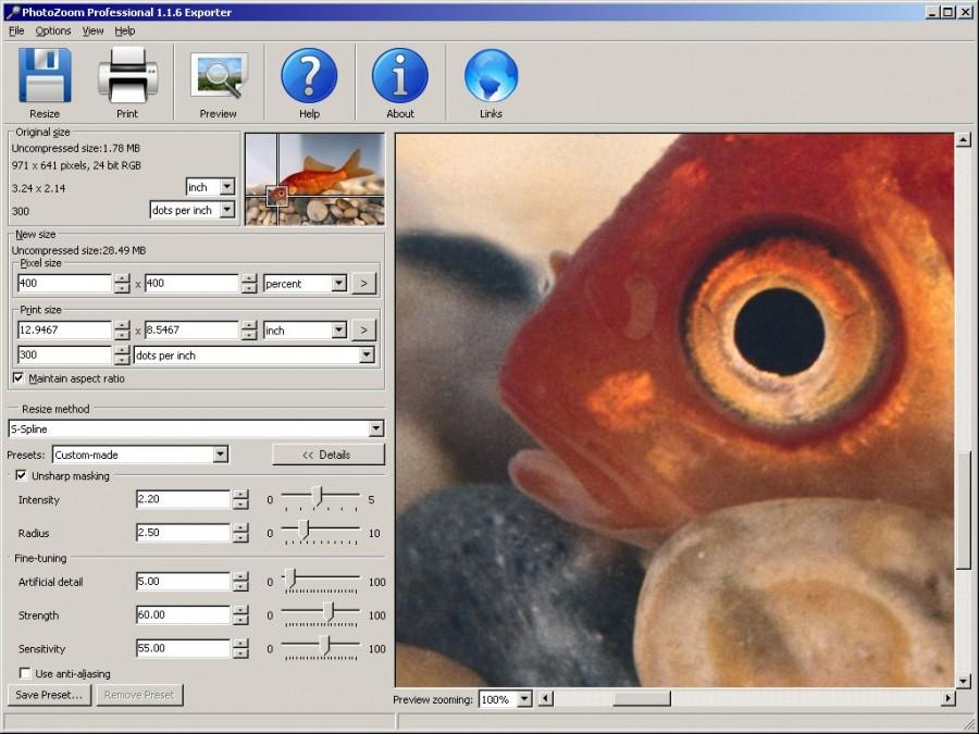 BenVista PhotoZoom Professional 1.2.2 - увеличивать размер изображения прак