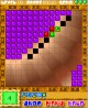 BrickGenius for Pocket PC